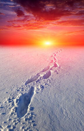 snow-path in steppe on sunset background photo