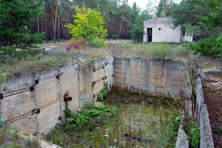 needless: Abandoned industrial structure in forest
