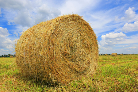 rebelling: haystack on the filed in summer day   Stock Photo