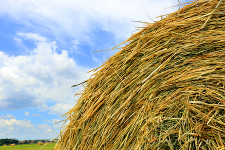 rebelling: hay stack close-up on cloudy sky background