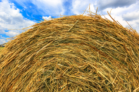 rebelling: hay stack close-up on cloudy sky background   Stock Photo