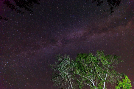 View to Milky Way Galaxy on nigh sky   photo