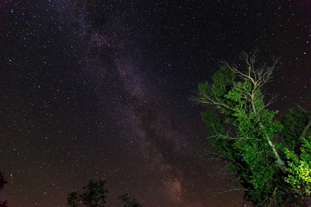 Night sky with Milky Way Galaxy  photo