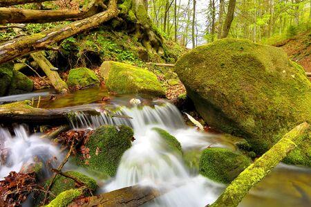 small mountain stream among green stones photo