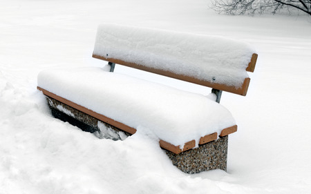 covered in snow: Bench in park covered snow