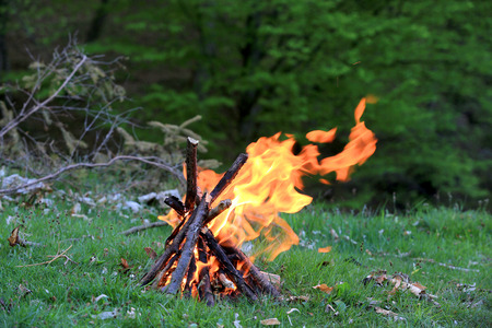 Lagerfeuer auf der grünen Wiese im Wald Standard-Bild - 36621679