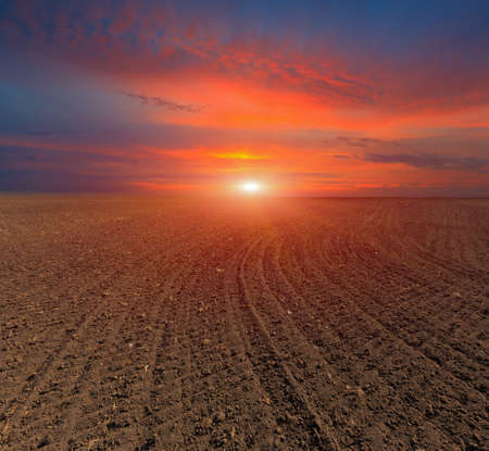 plugged: hot sunset over plugged field