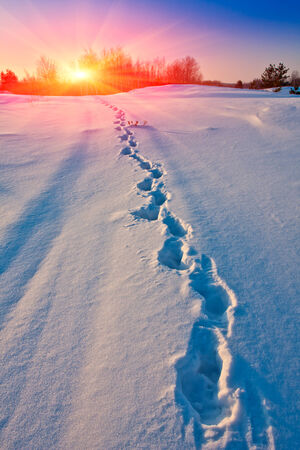 subset: Winter path way with subset background Stock Photo