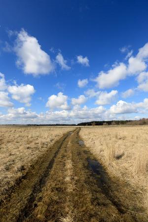 rut: Rut road in steppe under nice clouds in sky
