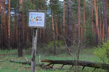 inflamation: Information board in pine forest with message on Ukrainian: keep forest from fire