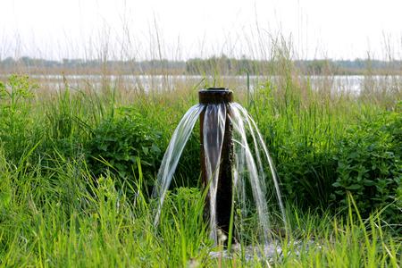 source d eau: source d'eau sur la prairie dans la steppe Banque d'images