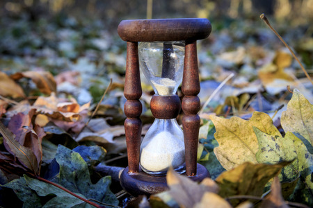 leafage: Old hourglass among autumn leafage