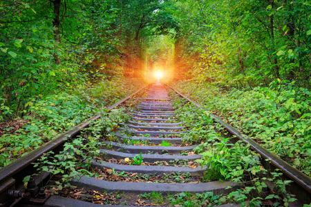 forest railroad: Railroad in forest near Klenav town, Ukraine