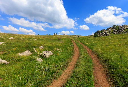 rut: summer scene with rut road across mountain meadow