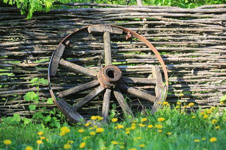 old wood farm wagon: old brocken wooden carriage wheel on wattled fence background