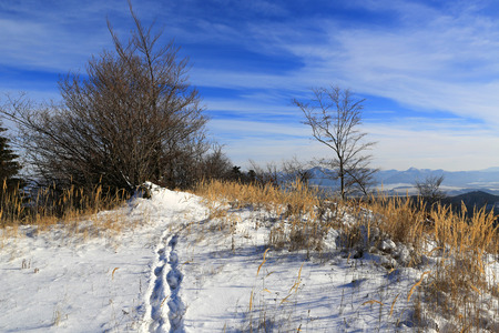 Paisaje de invierno con la ruta a través de prado en las montañas Foto de archivo