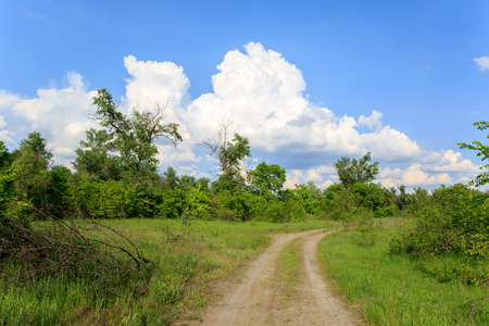rut: rut road in steppe under nice sky with clouds Stock Photo