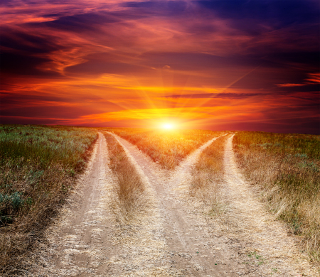 turn away: scene with fork roads in steppe on sunset sky background