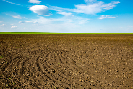 ploughed: agricultural ploughed field in sunny spring day