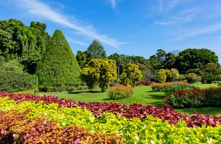 srilanka: Royal Botanical Garden in SriLanka