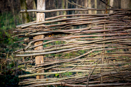 fense: wooden wattle fense in autumn garden - abstract background