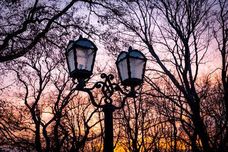 sky brunch: Street lantern in evening park