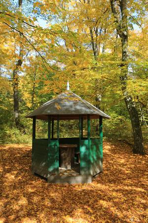 old gadzebo in autumn park Stock Photo