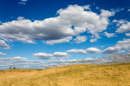 nice clouds in sky in steppe over grass