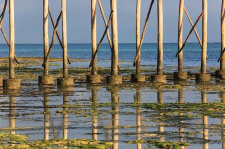 Piles of bridge on the ocean at low tide. Landscape, Zanzibar, Kendwa Rocks village.
