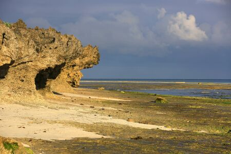 ocean shore at low tide, Morning landscape, Zanzibar