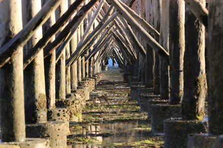 view on bridge piles at low tide on ocean, Zanzibar