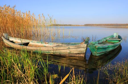old wooden boats on lake among cane
