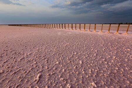 Landscape with old piles in salt lake near Azov Sea, Ukraine. Pink Salt lake surface under evening sky Фото со стока