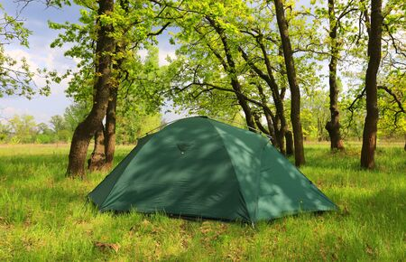 Landscape with tourist tent in green spring forest