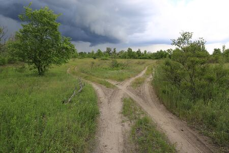 Landscape with fork roads in green steppe before thunderstorm, Ukraine
