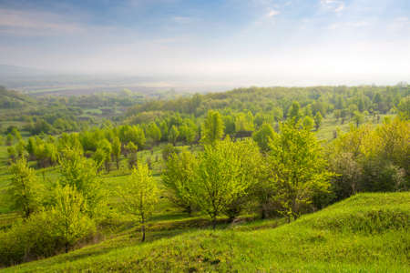 morning scene with green valley Stock fotó