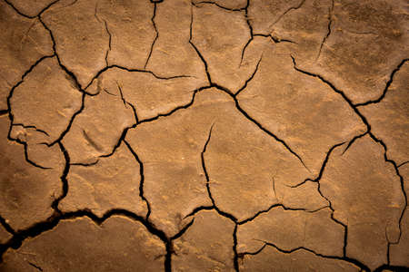 dry cracked earth surface abstract background