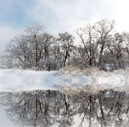 Winter landscape with frozen trees near lake water surface Standard-Bild