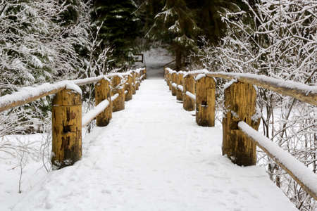 wooden bridge with fence in winter forest Standard-Bild - 163816482