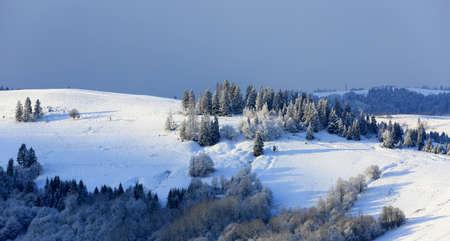 nice winter scene in Carpathian mountains, Ukraine Standard-Bild