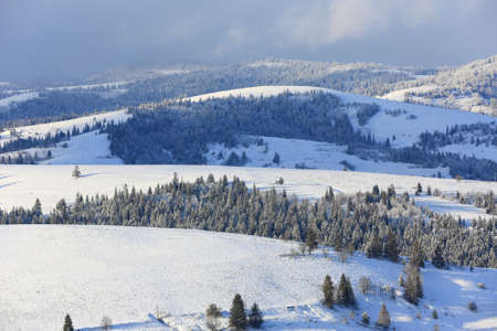 snow covered mountains ridge in Carpathians, Ukraine