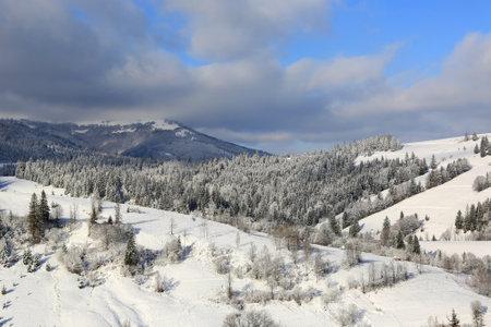 winter landscape in Carpathian mountains, take it in Ukraine