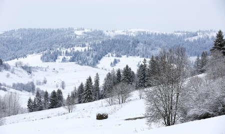 winter in carpathian mountains, Ukraine