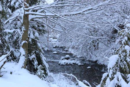 landscape with brook in winter forest Standard-Bild - 163904018