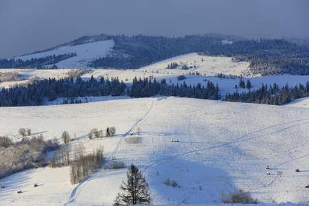 winter landscape in Carpathian mountains, Ukraine