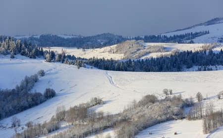 majestic winter scene in Carpathian mountains. Take it in Ukraine Standard-Bild