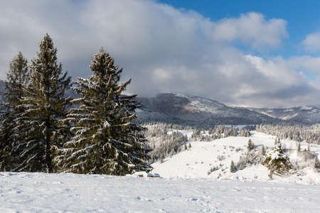 Nice winter day in Carpathian mountains. Take it in Ukraine