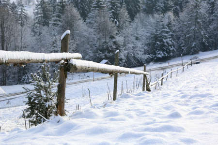 wooden fence on border of snovy meadow Standard-Bild