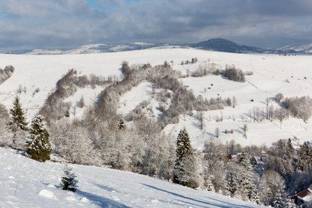 winter landscape in Carpathian mountains in Ukraine Standard-Bild