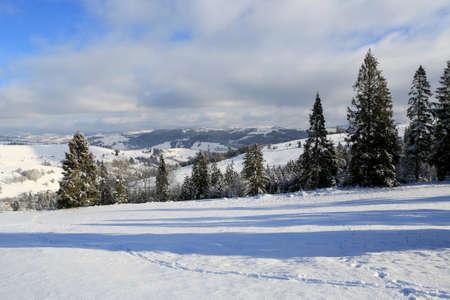 nice winter landscape in Carpathian mountains, Ukraine